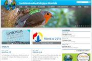 Nouveau Site COM OMJ